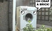 Washing Machine does Harlem Shake