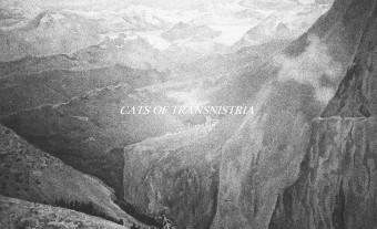 Album Premiere: Cats of Transnistria