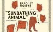 Parquet Courts – Sunbathing Animals