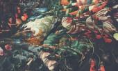 Len Sander – Phantom Garden